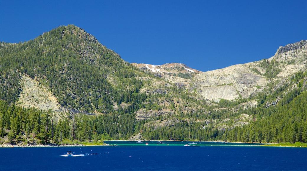 Western Nevada