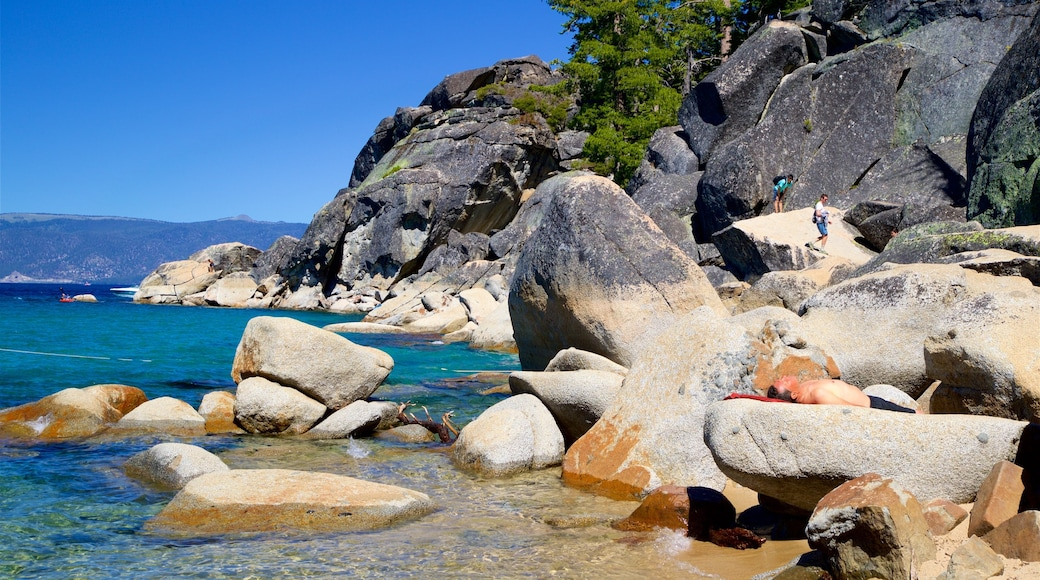 D. L. Bliss State Park which includes a lake or waterhole and rugged coastline as well as an individual male