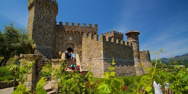 Castello di Amorosa showing a church or cathedral, wildflowers and heritage elements