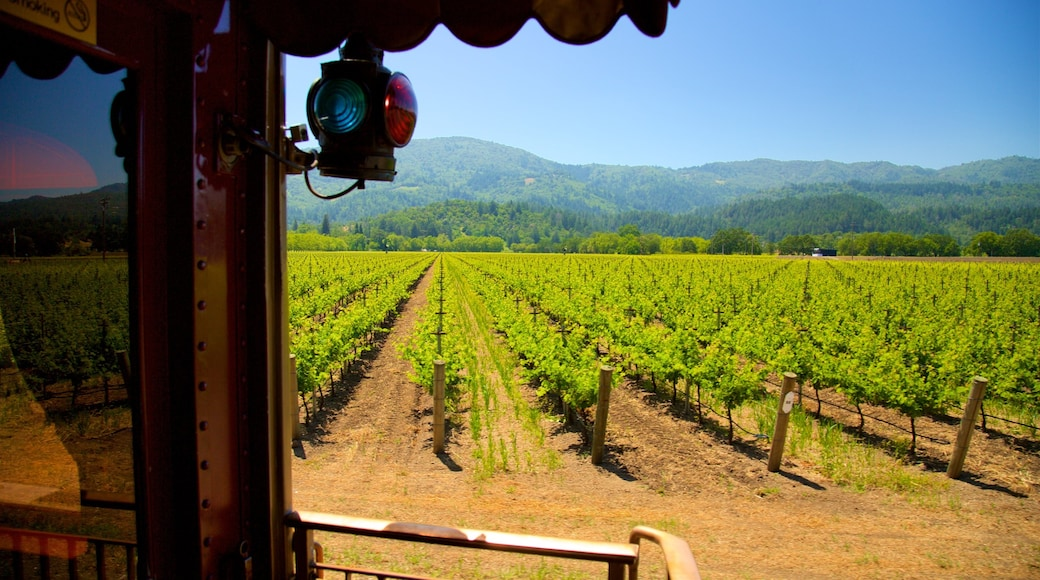 Napa Valley Wine Train showing tranquil scenes and farmland