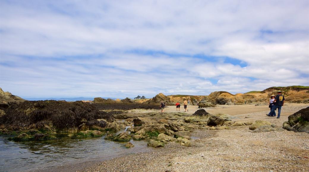 Glass Beach montrant vues littorales et plage de galets aussi bien que petit groupe de personnes