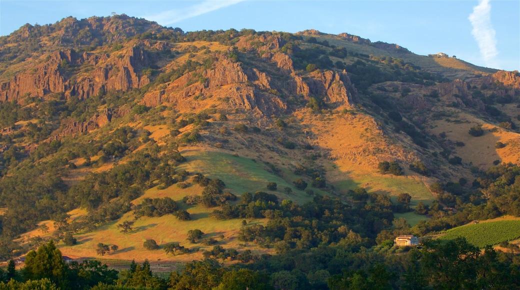 Napa mettant en vedette montagnes et coucher de soleil