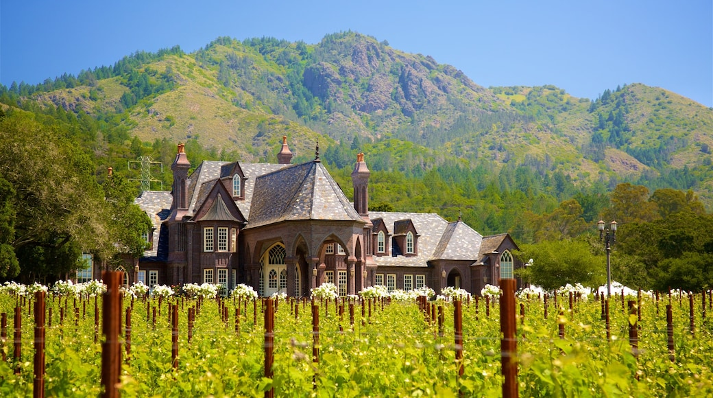 Ledson Winery and Vineyards which includes farmland and tranquil scenes