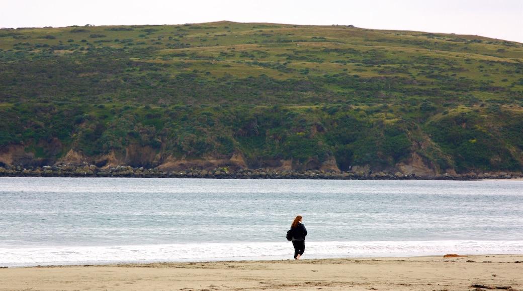 Strand von Doran welches beinhaltet ruhige Szenerie, Sandstrand und allgemeine Küstenansicht