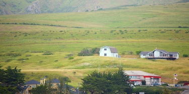 Bodega Bay showing a small town or village and tranquil scenes