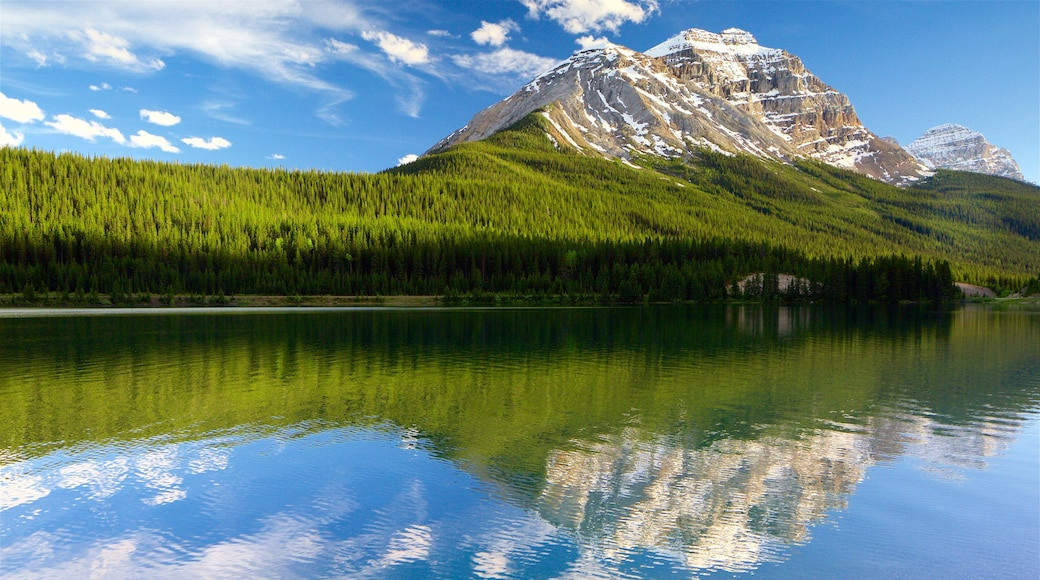 Yoho National Park which includes a lake or waterhole, mountains and tranquil scenes