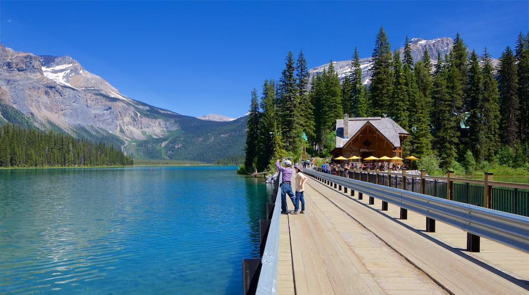 Yoho National Park showing a lake or waterhole and a bridge as well as a couple