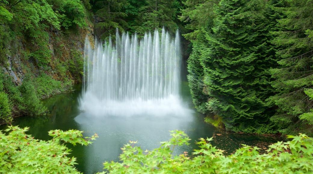 布查特花園 设有 噴泉 和 河流或小溪