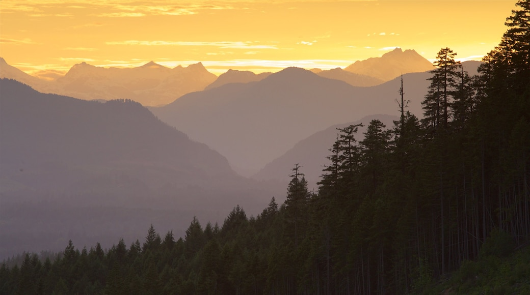 Port Alberni showing a sunset, tranquil scenes and landscape views