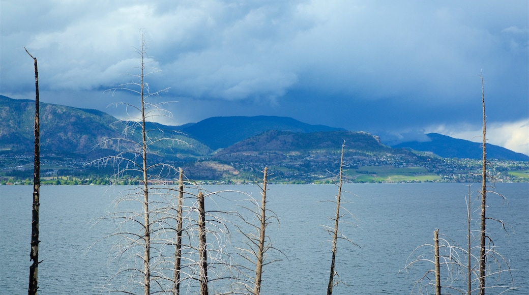 Thompson Okanagan showing a lake or waterhole and tranquil scenes