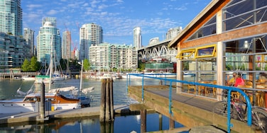 Granville Island showing a high-rise building, a city and a bay or harbour