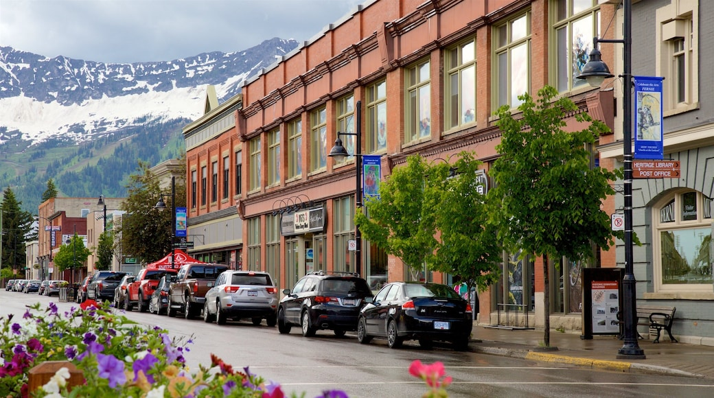 Fernie showing flowers, snow and mountains