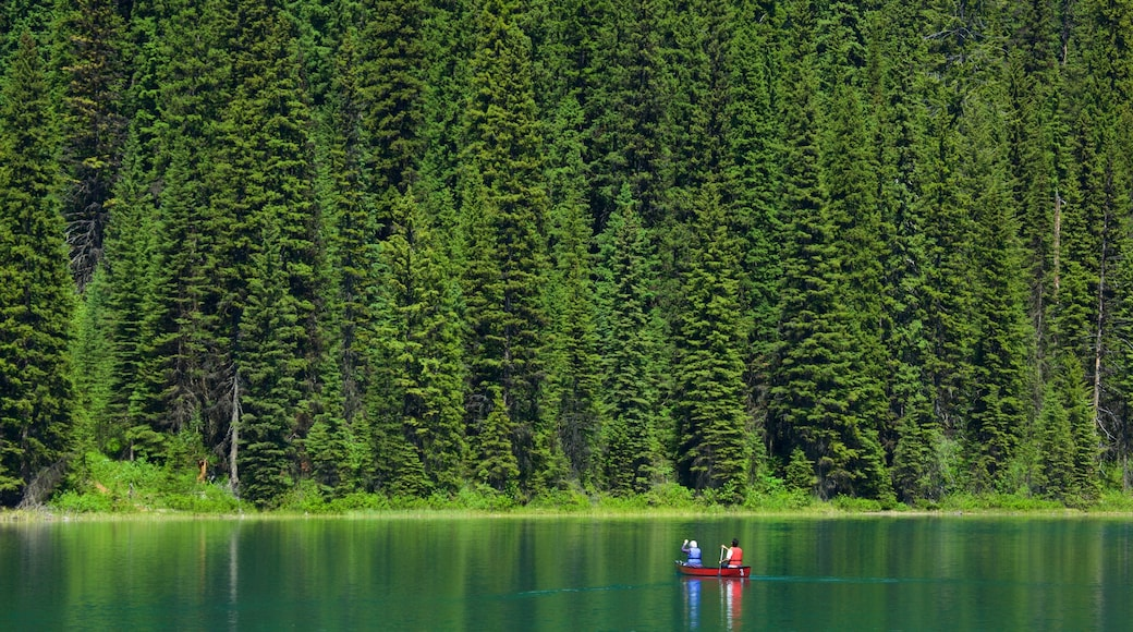 Yoho National Park which includes kayaking or canoeing, forest scenes and a lake or waterhole