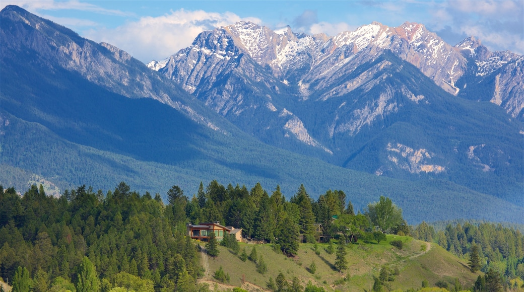 Invermere showing mountains, landscape views and tranquil scenes