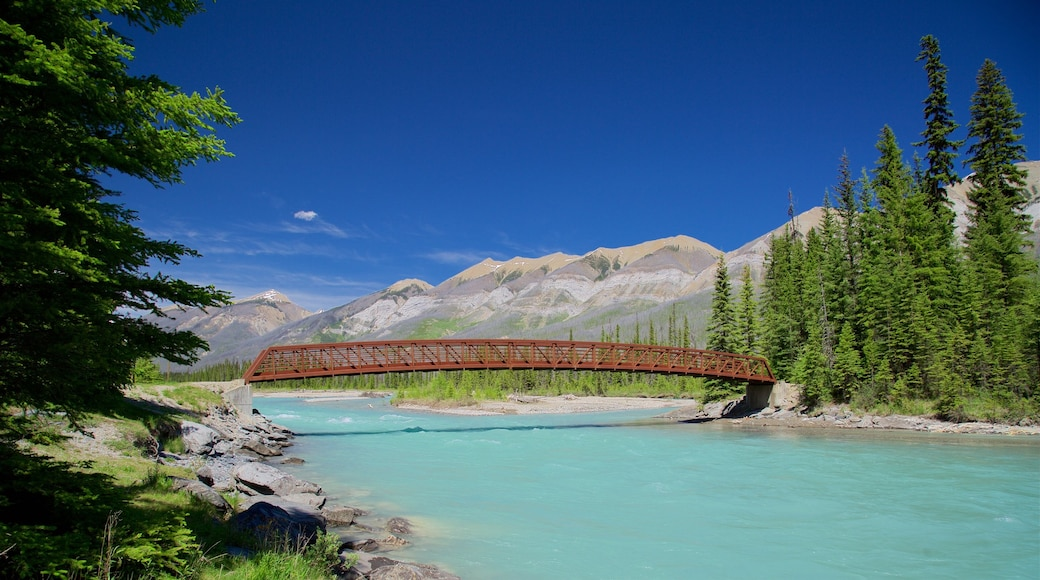 Kootenay National Park featuring a river or creek, tranquil scenes and a bridge