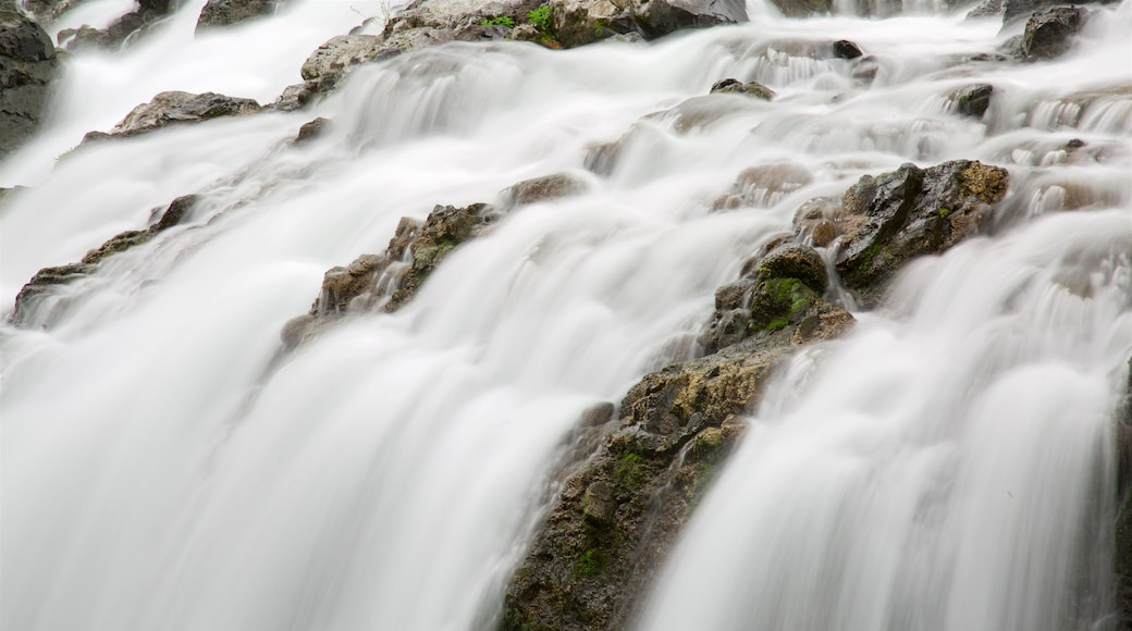 Englishman River Falls Provincial Park showing a waterfall