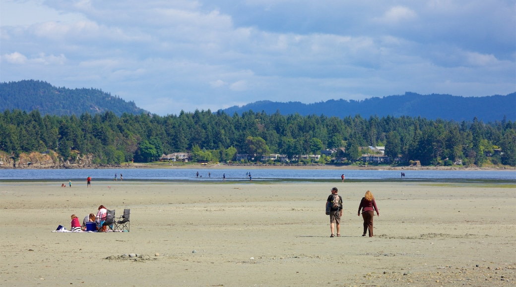 Rathtrevor Beach Provincial Park which includes a lake or waterhole, tranquil scenes and a sandy beach