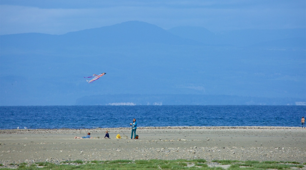 Rathtrevor Beach Provincial Park featuring general coastal views and a beach as well as a family