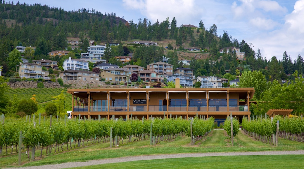 Quails\' Gate Estate Winery featuring a small town or village and tranquil scenes