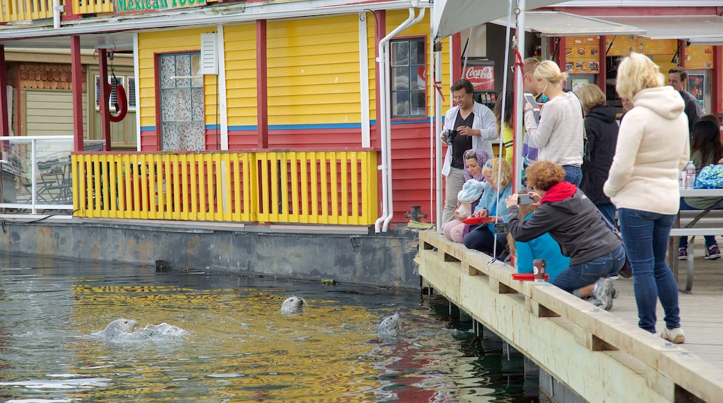 Fisherman\'s Wharf Park which includes marine life as well as a small group of people