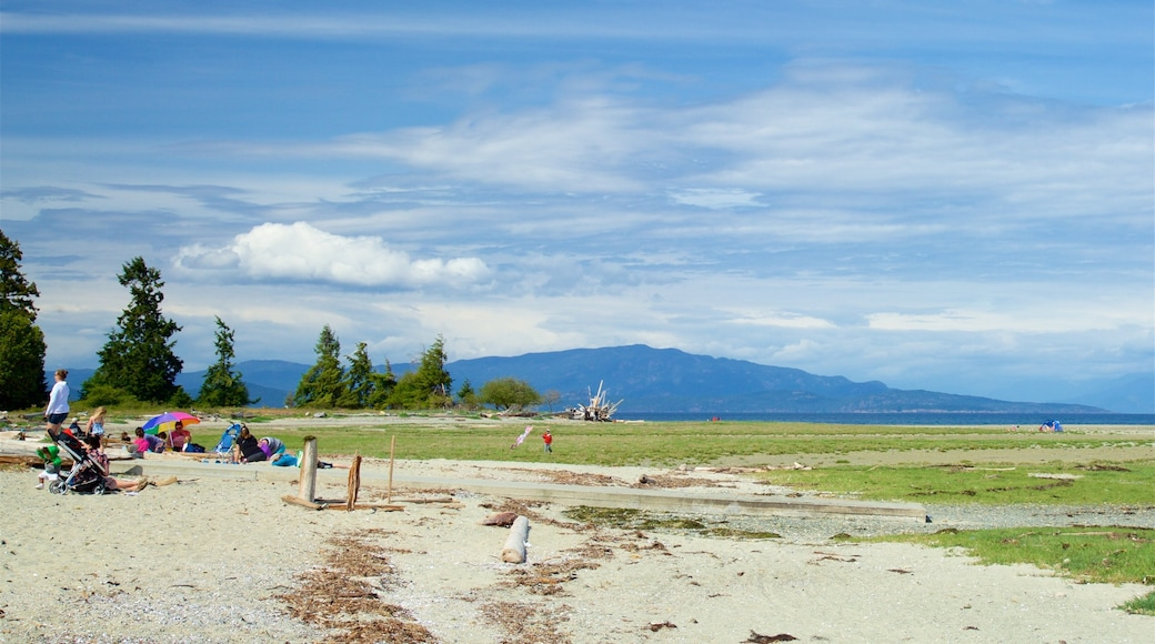 Rathtrevor Beach Provincial Park which includes tranquil scenes and landscape views as well as a small group of people