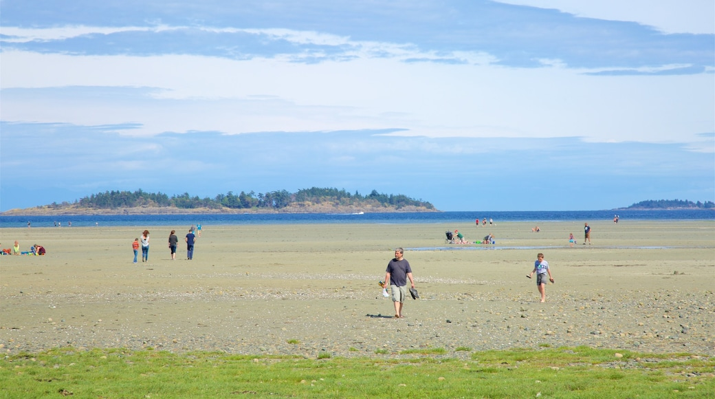 Rathtrevor Beach Provincial Park which includes tranquil scenes, landscape views and general coastal views