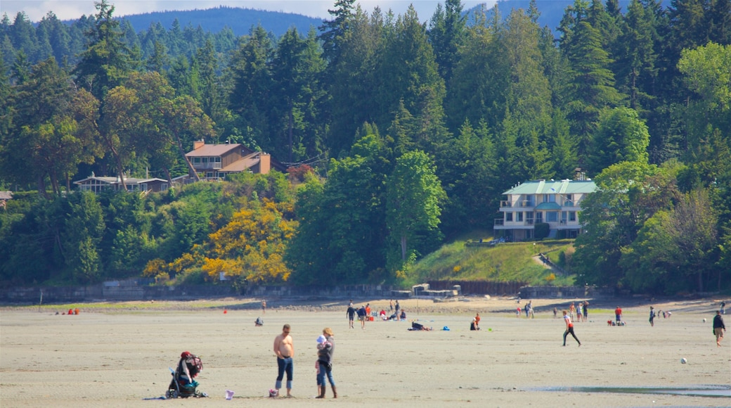 Rathtrevor Beach Provincial Park showing tranquil scenes, a sandy beach and a small town or village