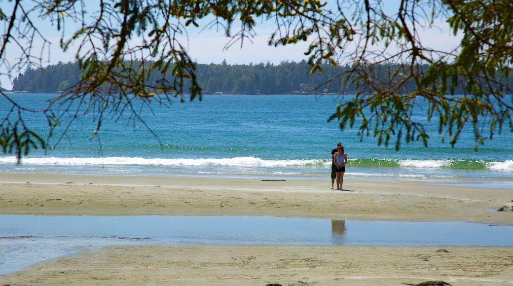 Tonquin Park showing surf, general coastal views and a sandy beach