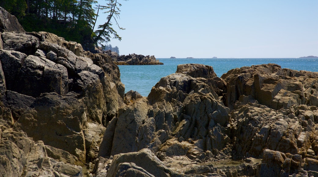 Tonquin Park which includes general coastal views and rocky coastline