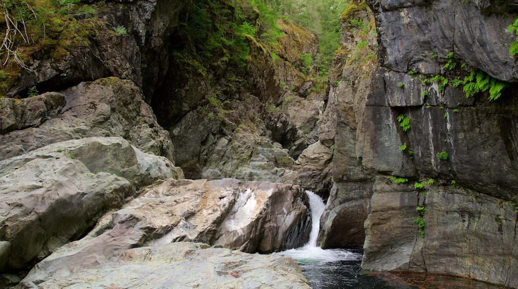Sooke Potholes Provincial Park showing a cascade