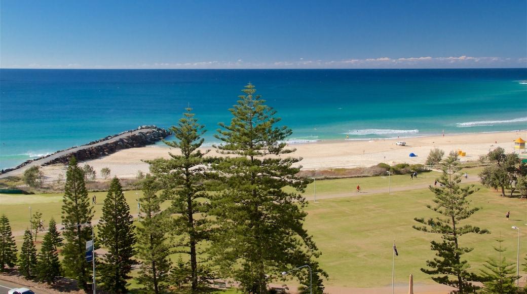 Coolangatta featuring a beach, general coastal views and a garden