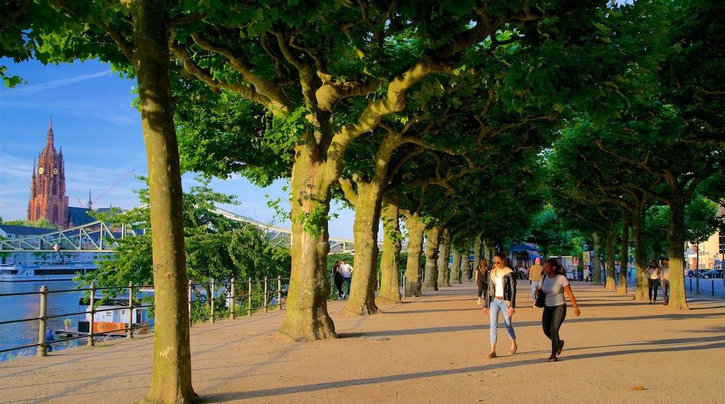 Francfort-sur-le-Main mettant en vedette coucher de soleil et jardin aussi bien que femme
