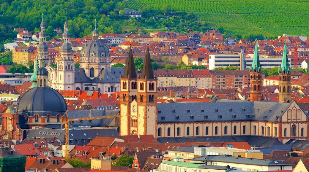 Würzburger Dom som inkluderar en stad och historiska element