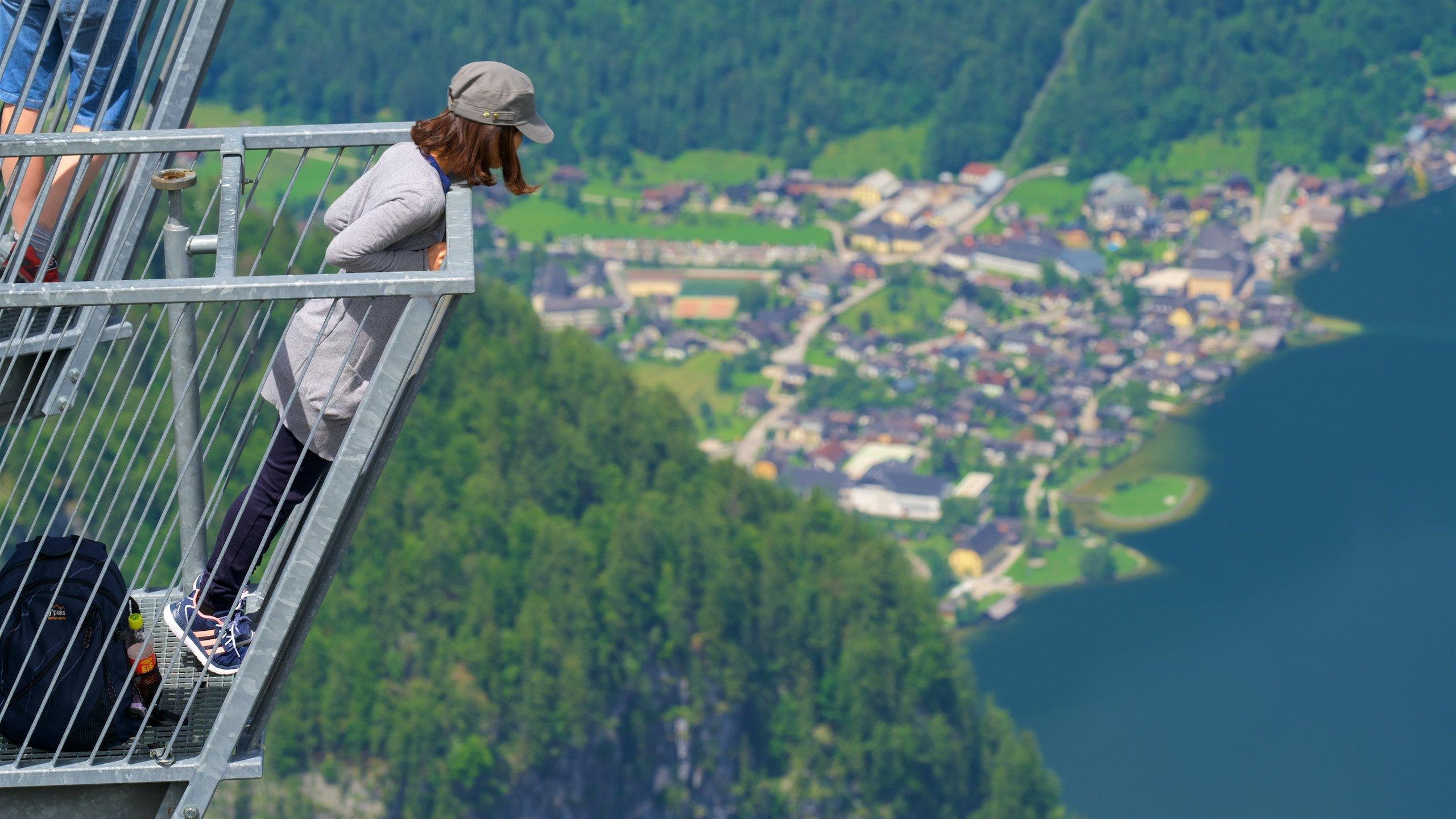 Övre Österrike, Österrike