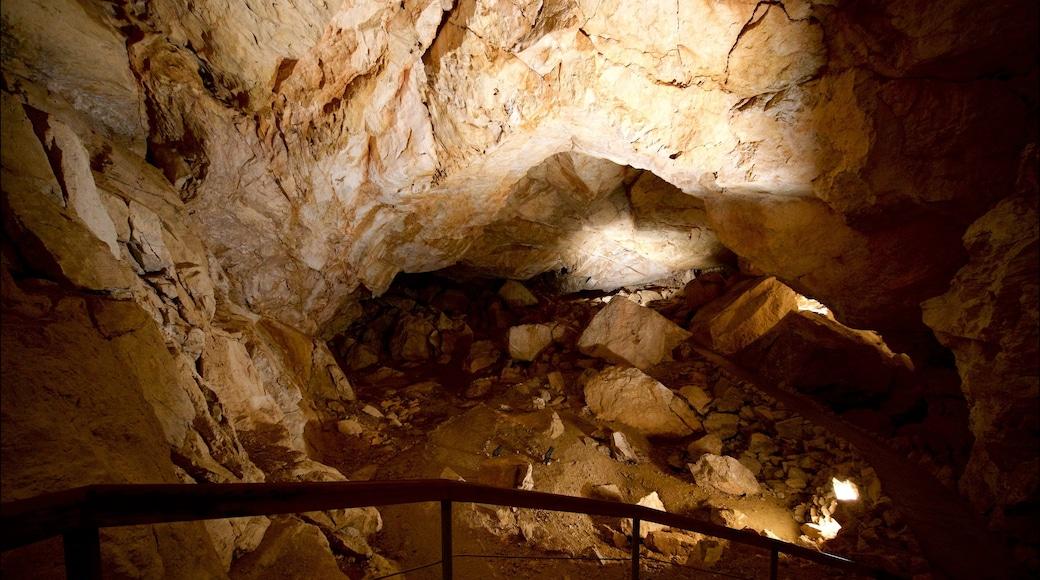 Obertraun welches beinhaltet Höhlen und Innenansichten