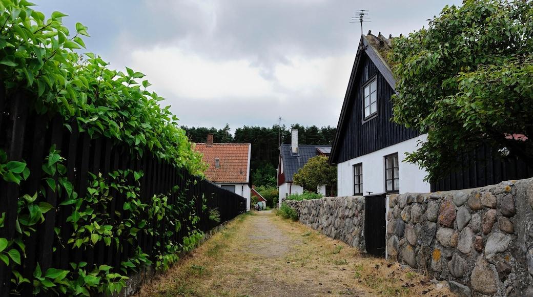 Skåne som visar gatuliv och en liten stad eller by