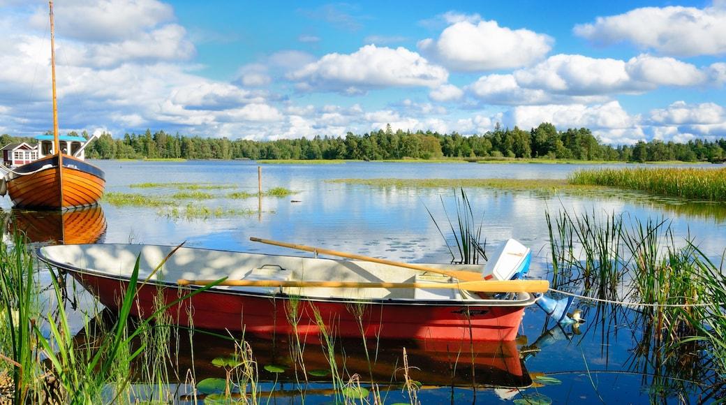 Trollhattan mostrando giro in barca e lago o sorgente d\'acqua