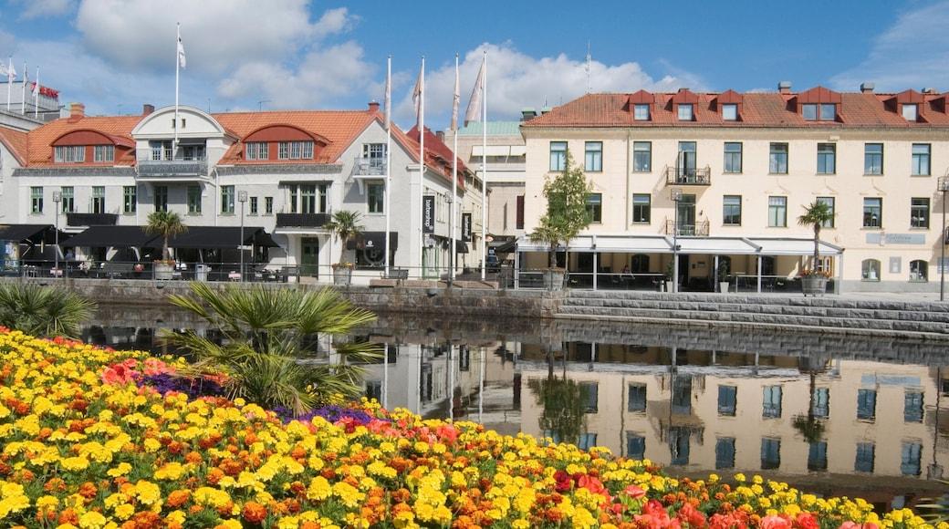 Borås toont bloemen, een klein stadje of dorpje en een vijver