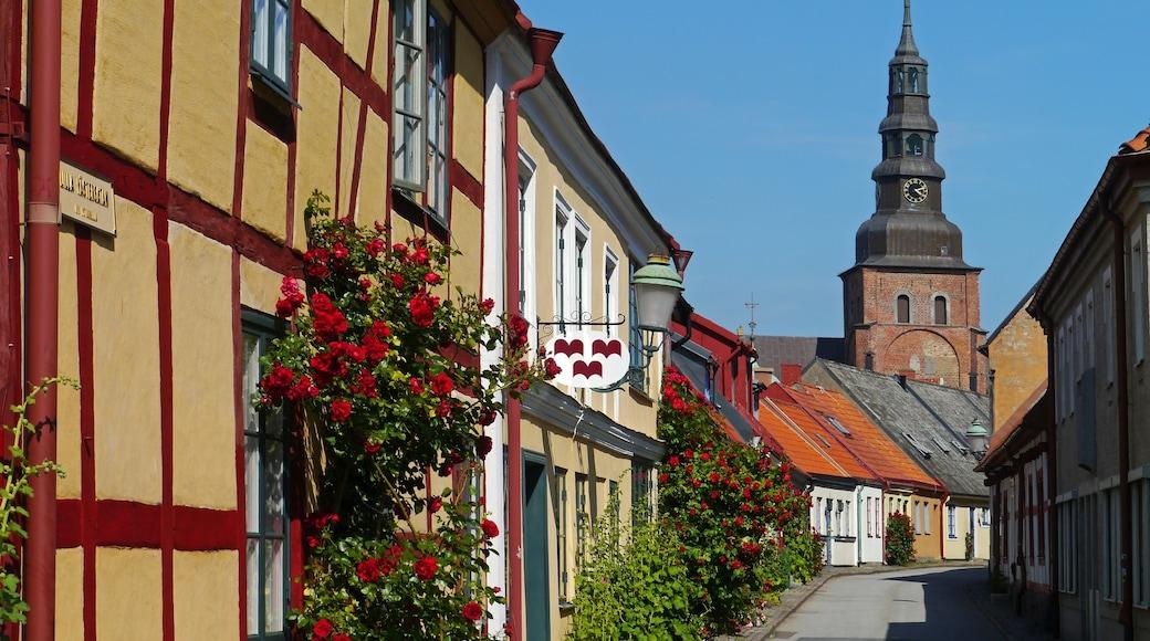Ystad das einen Straßenszenen, Kleinstadt oder Dorf und Blumen