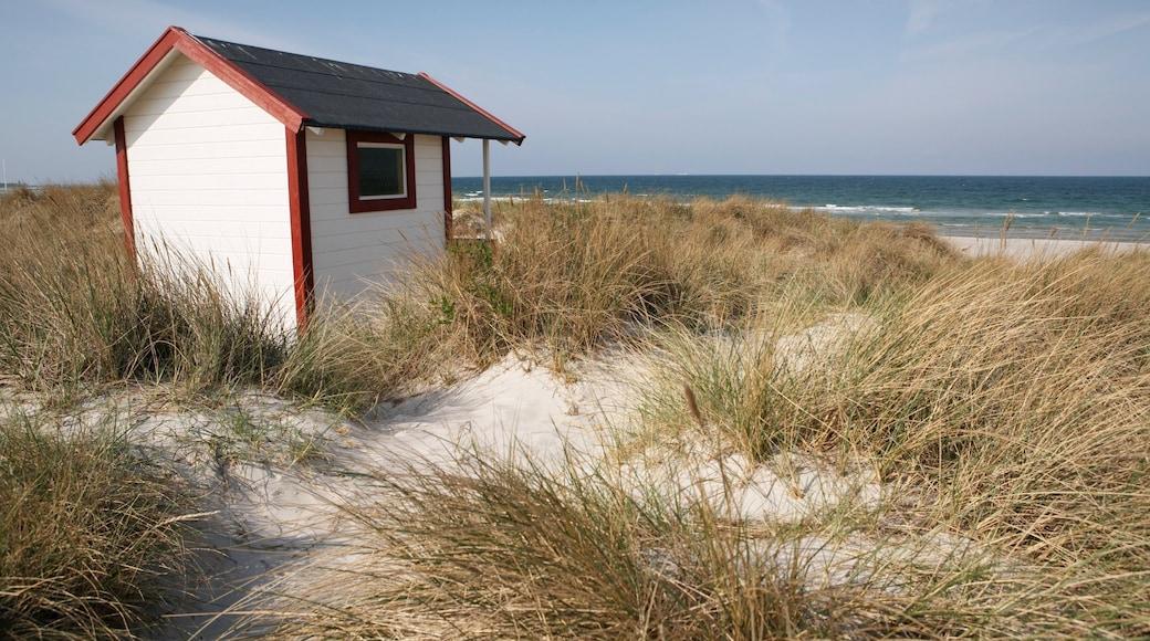 Skanör som inkluderar en sandstrand