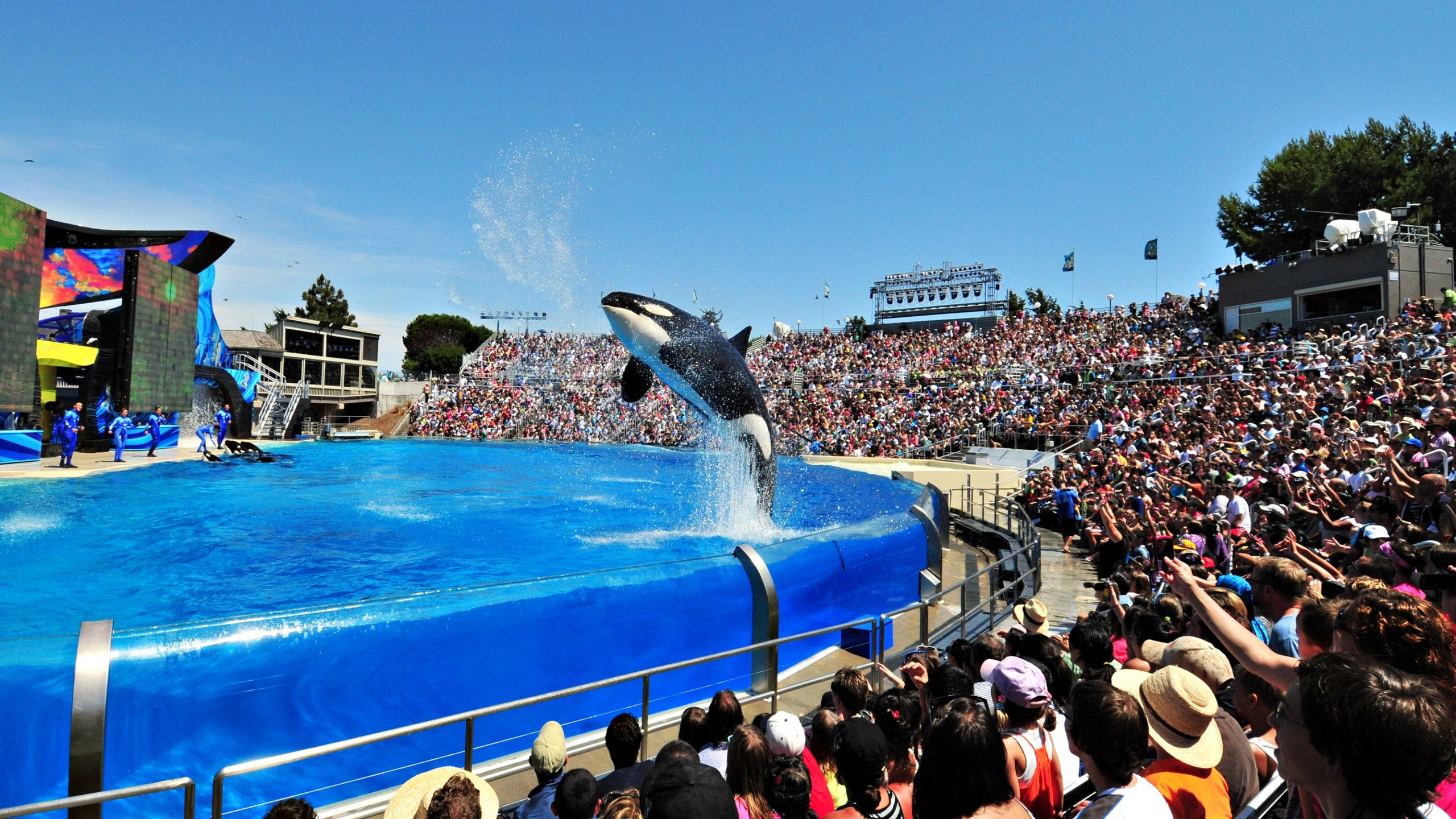 Top 10 Closest Hotels To Seaworld In San Diego Expedia Ca