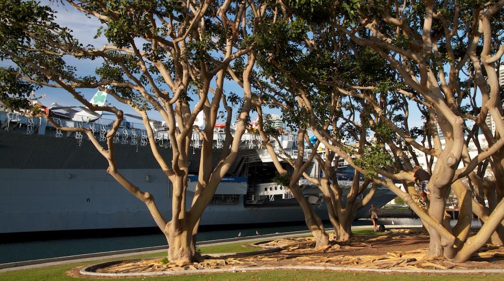 Navy Pier showing a marina and a garden