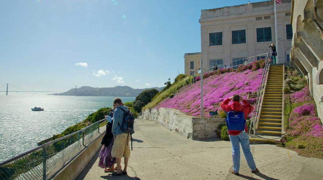 Alcatraz das einen allgemeine Küstenansicht, Inselbilder und Landschaften