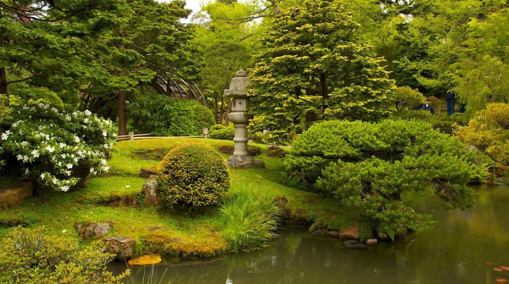 Japanese Tea Garden showing a garden, a pond and landscape views