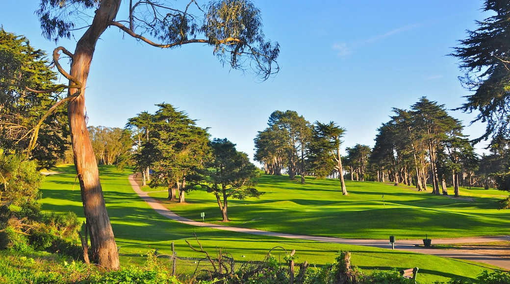 Presidio of San Francisco featuring a park and landscape views
