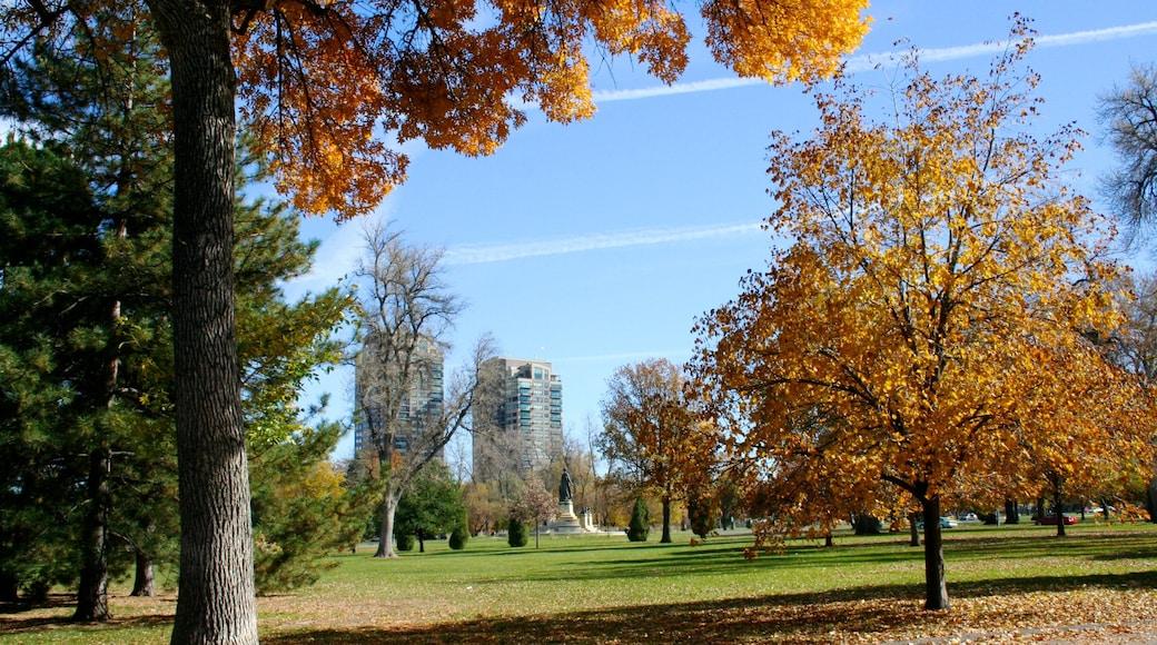 City Park featuring landscape views, a city and autumn colours