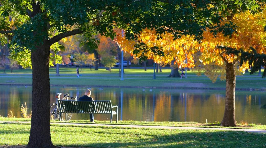 City Park showing a lake or waterhole, a park and landscape views