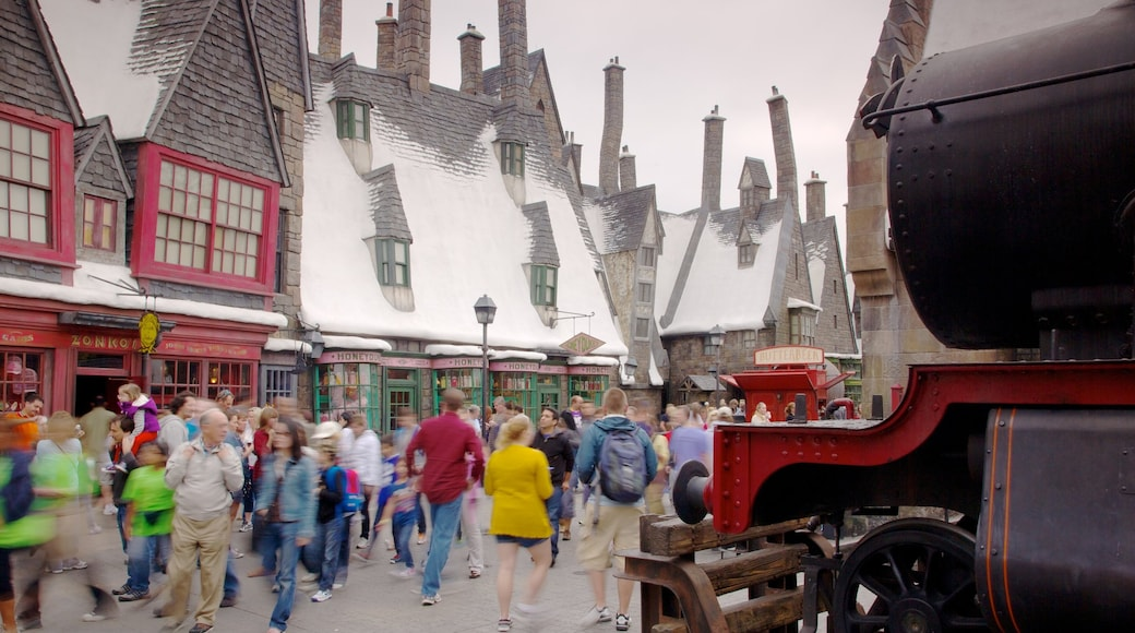 Universal Studios Orlando showing street scenes as well as a large group of people