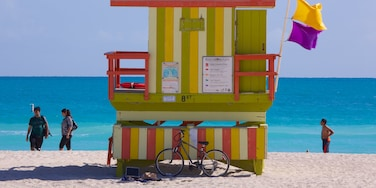 Miami Beach showing landscape views, a sandy beach and tropical scenes