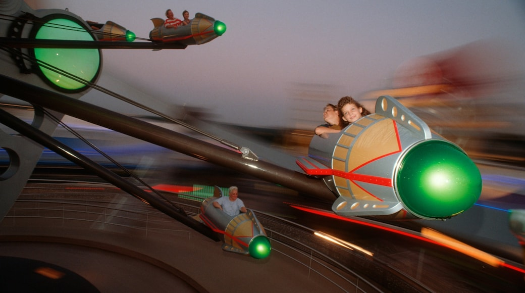 Magic Kingdom® Park showing rides, night scenes and a garden